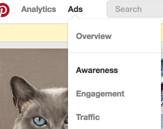 New Awareness Campaigns in Pinterest Promoted Pins CPM